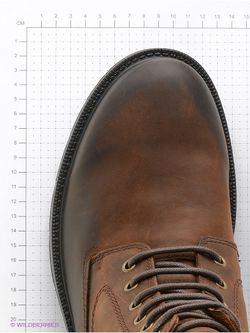 Ботинки Geox                                                                                                              коричневый цвет