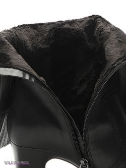 Сапоги Ecco                                                                                                              черный цвет