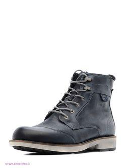 Ботинки Ecco                                                                                                              черный цвет