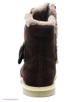 Ботинки Companion                                                                                                              коричневый цвет