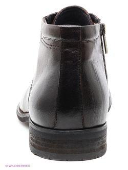 Ботинки Premier                                                                                                              коричневый цвет