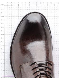 Ботинки Premier.                                                                                                              коричневый цвет