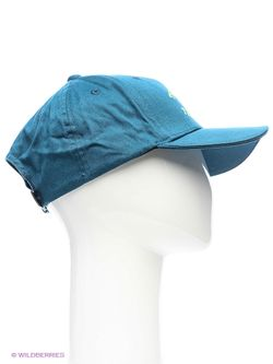Бейсболки Asics                                                                                                              синий цвет