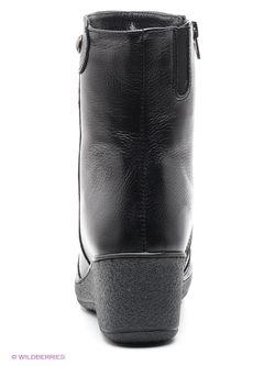 Полусапожки SHOIBERG                                                                                                              черный цвет