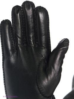 Перчатки Vitacci                                                                                                              черный цвет