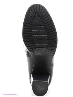Сапоги Kari                                                                                                              черный цвет