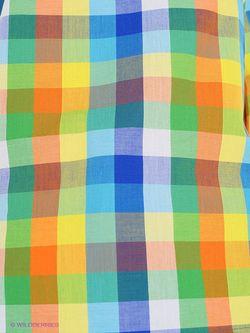 Блузки Colambetta                                                                                                              голубой цвет