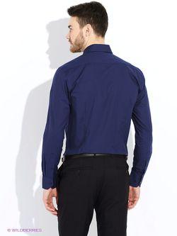 Рубашки Alfred Muller                                                                                                              синий цвет