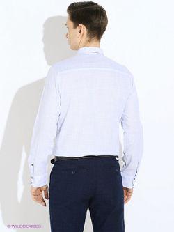 Рубашки TOM TAILOR                                                                                                              голубой цвет