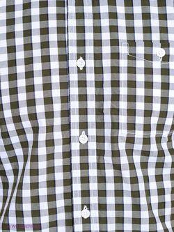 Рубашки TOM TAILOR                                                                                                              хаки цвет