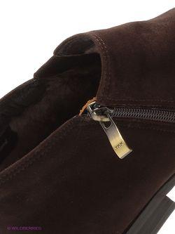 Ботинки Franco Bellucci                                                                                                              коричневый цвет