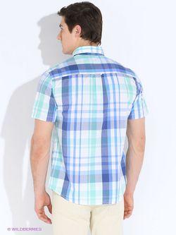 Рубашки Baon                                                                                                              зелёный цвет