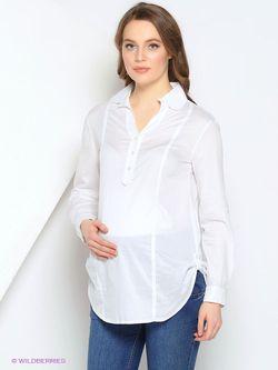 Блузки Gebbe                                                                                                              белый цвет