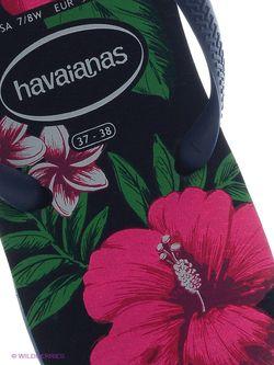 Шлепанцы Havaianas                                                                                                              синий цвет