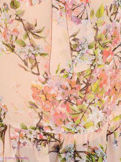 Блузки MOTIVI                                                                                                              розовый цвет