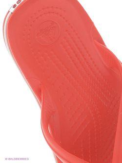 Пантолеты Crocs                                                                                                              красный цвет