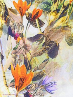 Джемперы Devur                                                                                                              оранжевый цвет