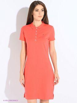 Платья Tommy Hilfiger                                                                                                              красный цвет