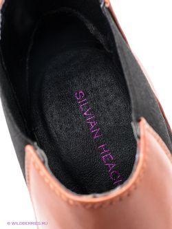 Полусапожки Silvian Heach                                                                                                              черный цвет
