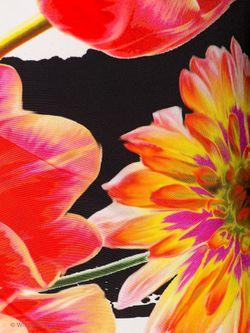 Платья COCCAPANI                                                                                                              оранжевый цвет