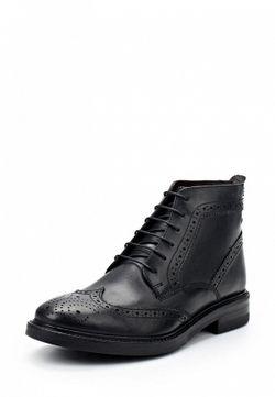 Ботинки Base London                                                                                                              черный цвет