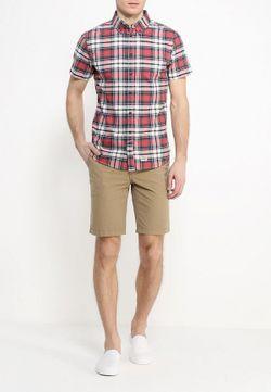Рубашка Blend                                                                                                              многоцветный цвет