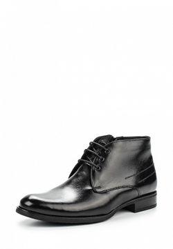 Ботинки Conhpol                                                                                                              чёрный цвет