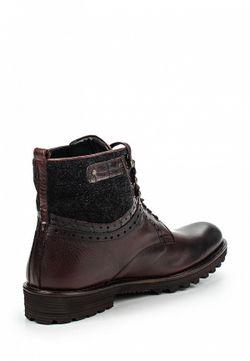 Ботинки Fonti                                                                                                              коричневый цвет