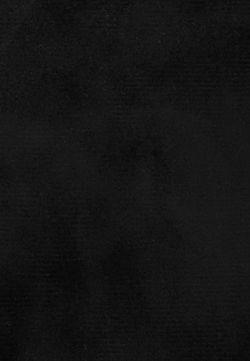 Сапоги Lamania                                                                                                              серый цвет