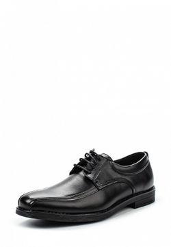 Туфли Malvern                                                                                                              черный цвет