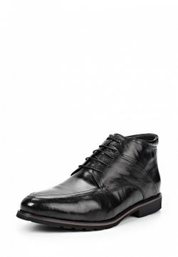 Ботинки Perfection                                                                                                              чёрный цвет