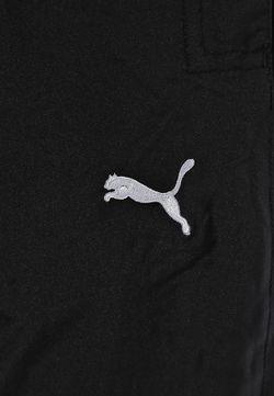 Брюки Спортивные Puma                                                                                                              черный цвет