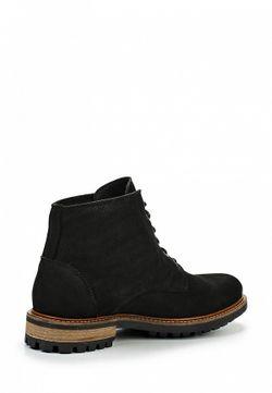Ботинки Storm                                                                                                              черный цвет