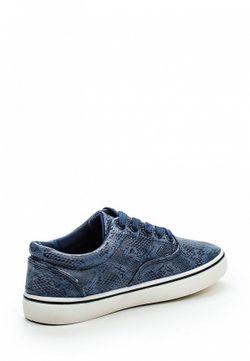 Кеды WS Shoes                                                                                                              синий цвет