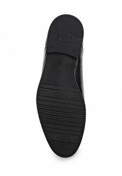 Лоферы Zenden                                                                                                              черный цвет