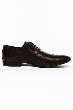 Туфли Etor                                                                                                              коричневый цвет