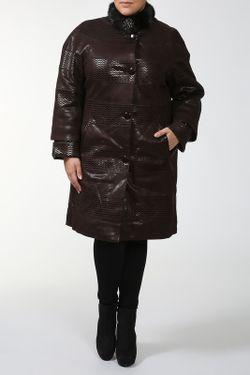 Куртка Amazone                                                                                                              коричневый цвет