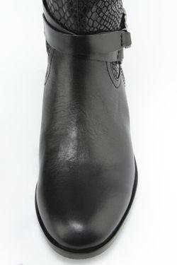 Сапоги Zumita                                                                                                              черный цвет