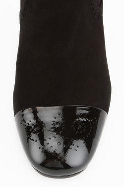 Сапоги Vitacci                                                                                                              черный цвет
