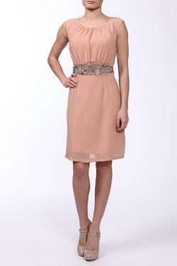Платье Acasta                                                                                                              розовый цвет
