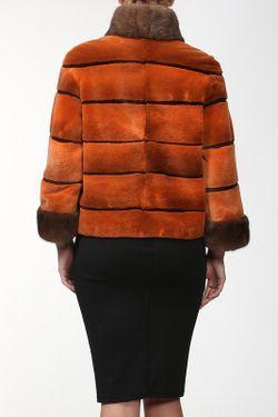 Куртка DSA                                                                                                              многоцветный цвет