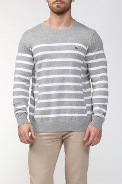 Пуловер Lacoste                                                                                                              белый цвет