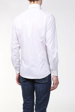 Рубашка Lacoste                                                                                                              белый цвет