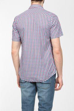 Рубашка Lacoste                                                                                                              голубой цвет