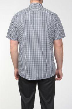 Рубашка Lacoste                                                                                                              None цвет