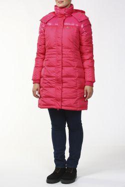 Пальто Adidas                                                                                                              многоцветный цвет