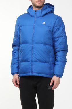 Куртка Adidas                                                                                                              многоцветный цвет