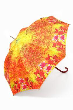Зонт Slava Zaitsev                                                                                                              оранжевый цвет