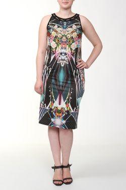 Платье Helmidge                                                                                                              многоцветный цвет