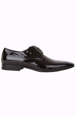 Туфли Giorgio Fabiani                                                                                                              чёрный цвет